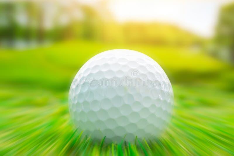 弄脏徒升作用在企业冲击焦点的高尔夫球 库存照片