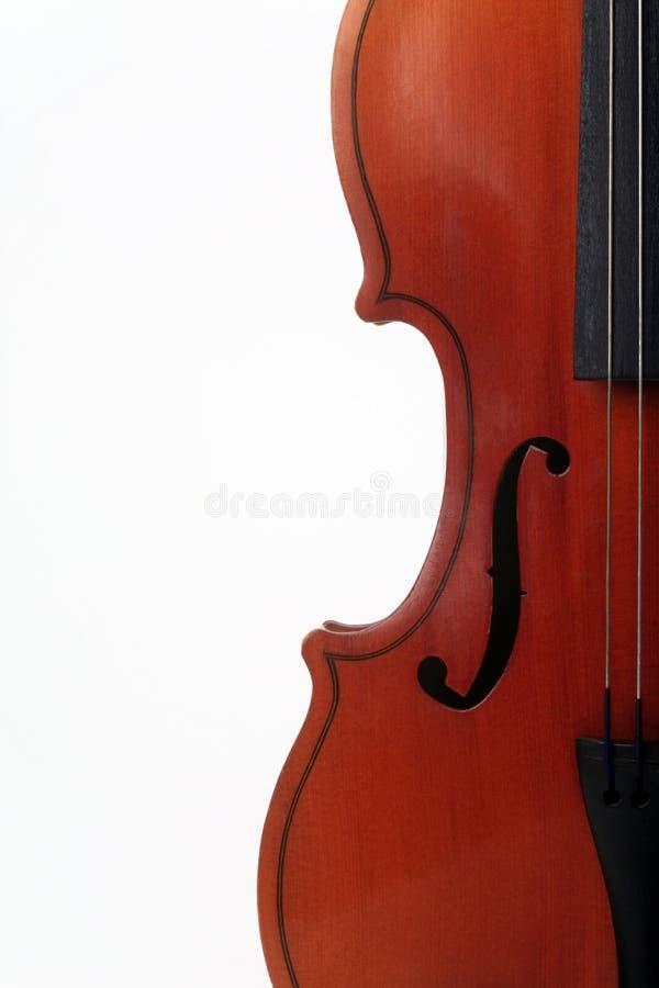 弓弦乐器 免版税库存图片
