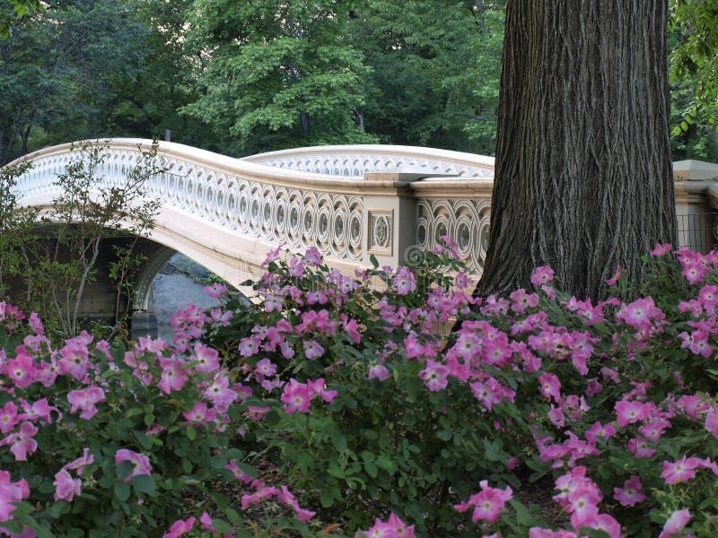 弓桥梁 免版税库存图片