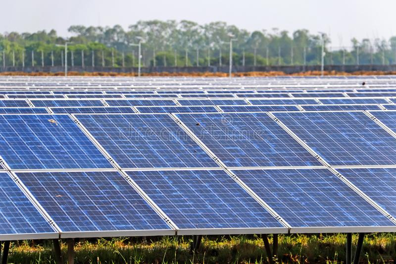 引起电清洁能源的太阳电池板 库存照片