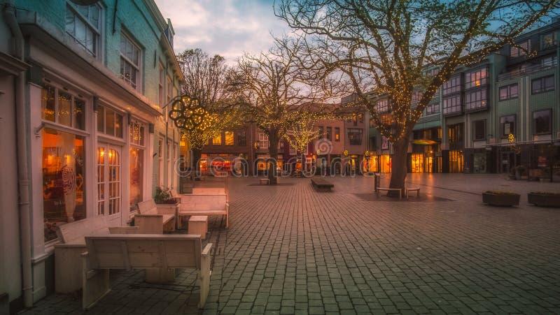 弗利辛恩,西兰省,荷兰/荷兰- 2017年11月:装饰的传统荷兰房子和树在小镇 库存图片