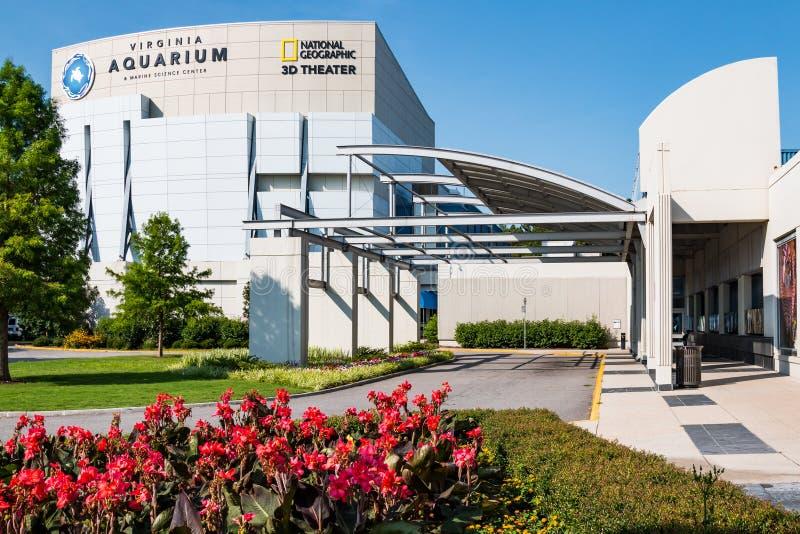 弗吉尼亚水族馆&海洋科学中心与红色花在前景 库存照片
