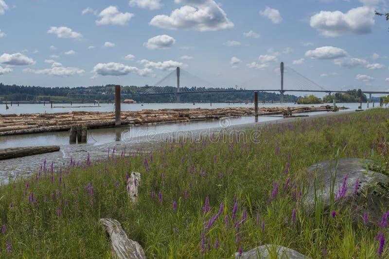 弗拉塞尔河在温哥华,加拿大 免版税库存照片