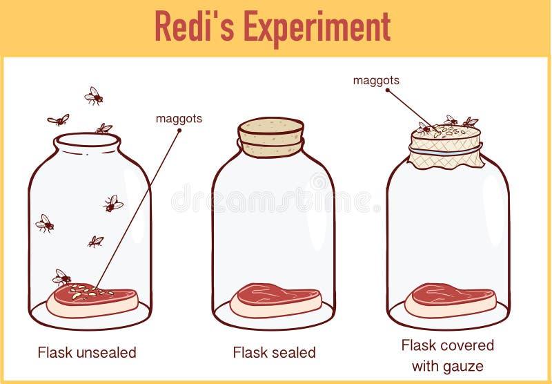 弗朗切斯科・雷迪1668实验的传染媒介例证 皇族释放例证