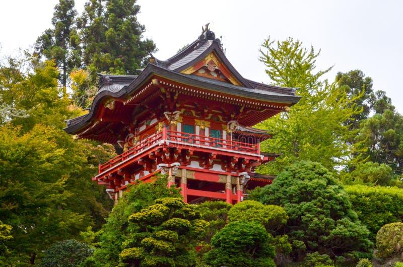 弗朗西斯科庭院日本圣茶 库存照片