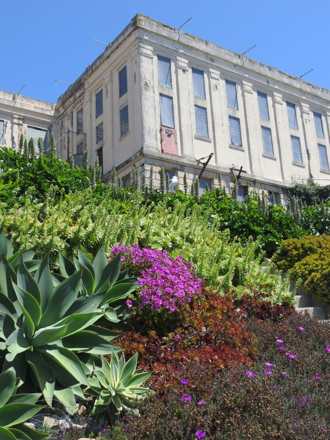 弗朗西斯科・圣 Alcatraz看法与他美妙的庭院的 免版税库存图片