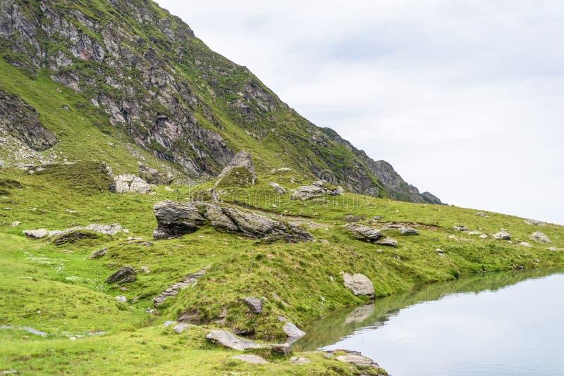 弗格拉什山的小湖在Balea附近 图库摄影
