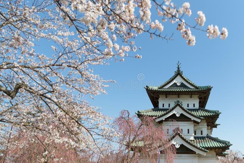弘前城堡和佐仓樱花树 免版税库存照片
