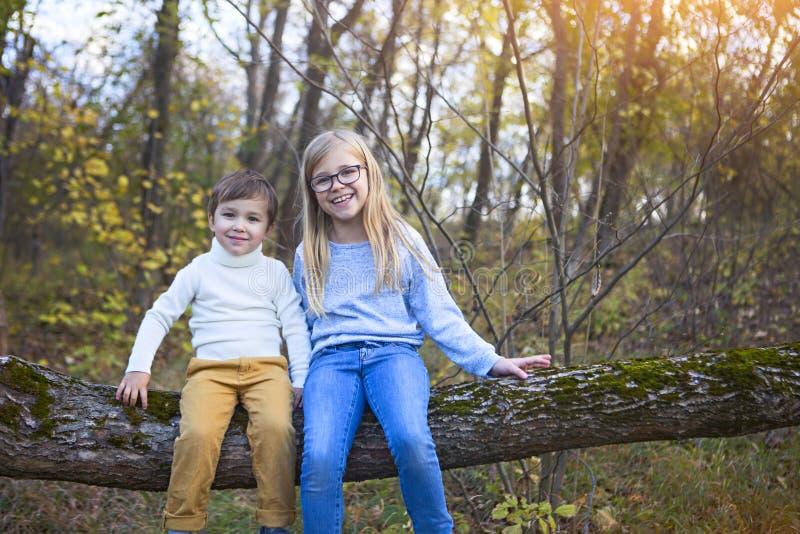 弟弟和他的姐妹坐在秋天的树 免版税库存照片