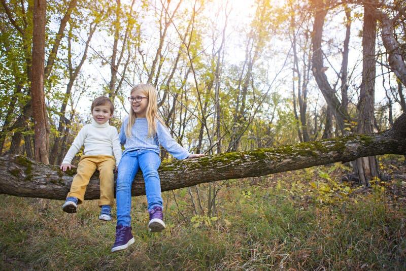 弟弟和他的姐妹坐在秋天的树 图库摄影