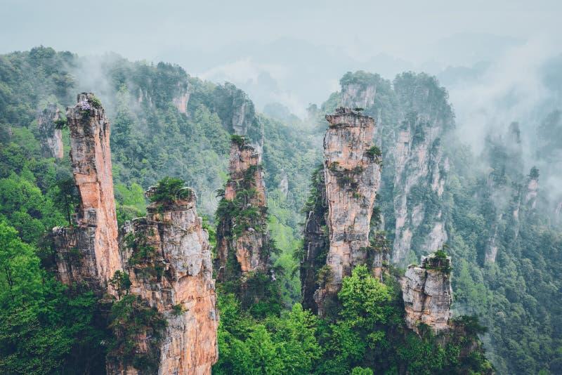 张家界山,中国 免版税库存图片