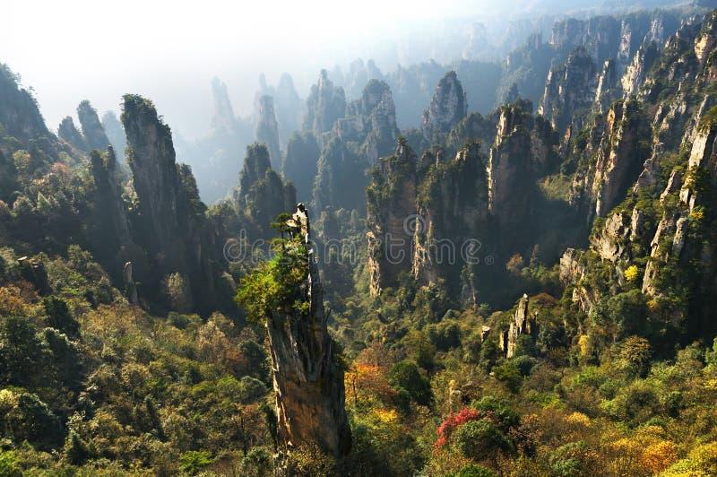 张家界森林公园 上升从峡谷的硕大柱子山 田仔山 湖南,中国 库存图片