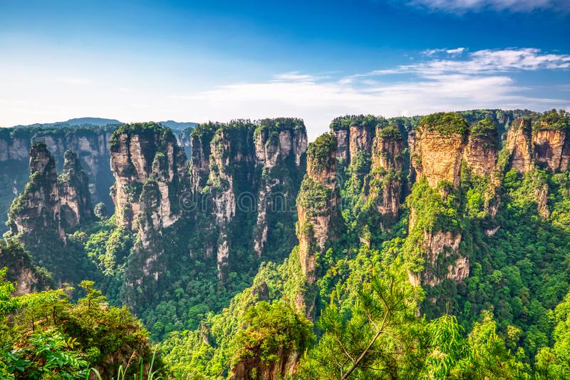 张家界 上升从峡谷的硕大石英柱子山在夏天好日子期间 湖南,中国 免版税图库摄影