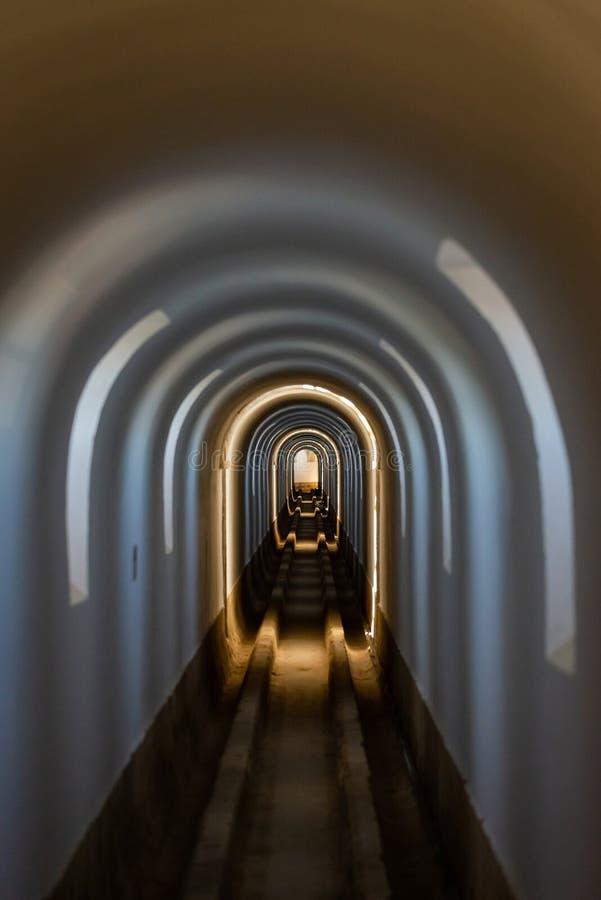 弧隧道,各种各样的颜色光里面 库存照片