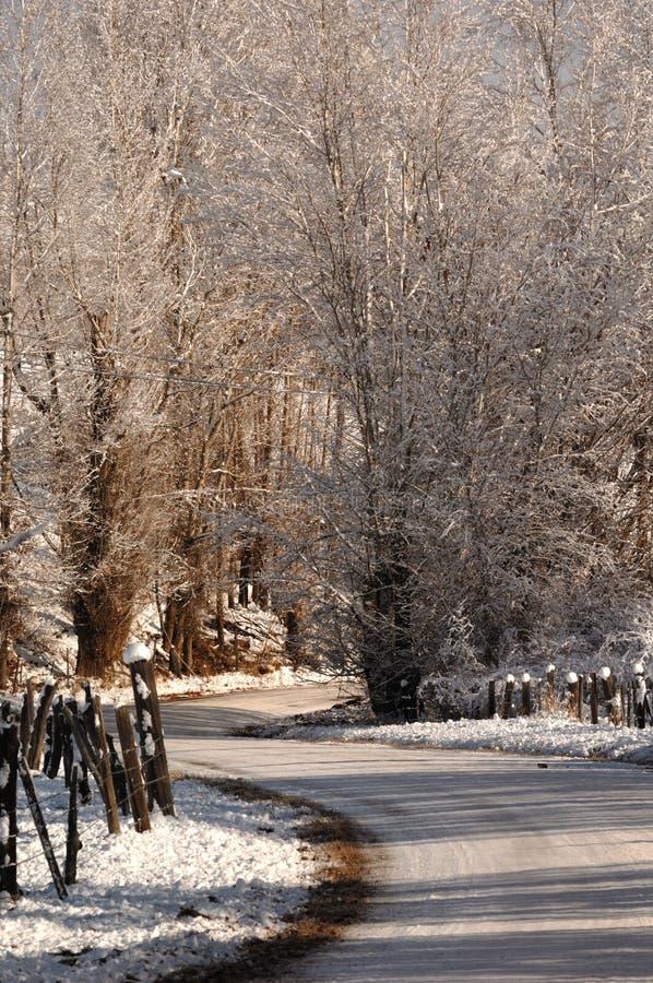 弯曲有Fenceline的路通过爱达荷冬天雪场面 库存照片