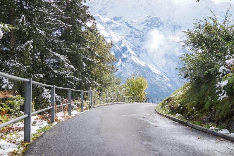 弯曲用结霜的雪和绿色草甸山盖的路我 库存照片