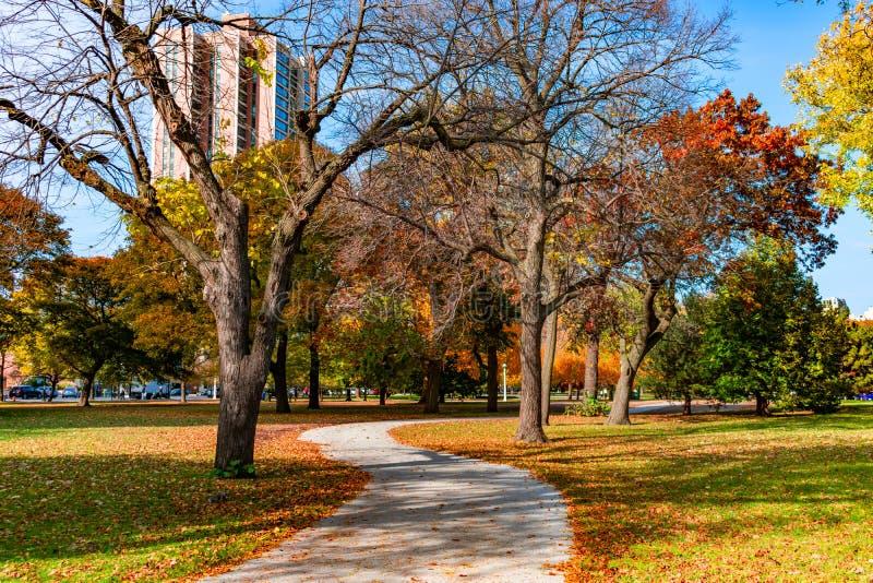 弯曲的五颜六色的走道在秋天期间的林肯公园芝加哥 库存图片