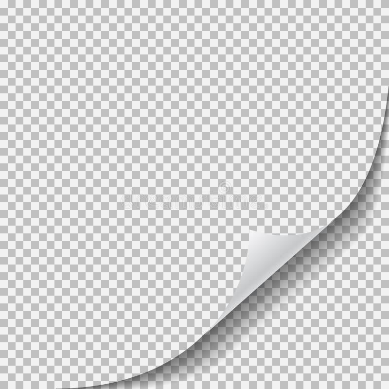 弯曲的壁角卷毛页纸张可实现的影子覆盖 皇族释放例证