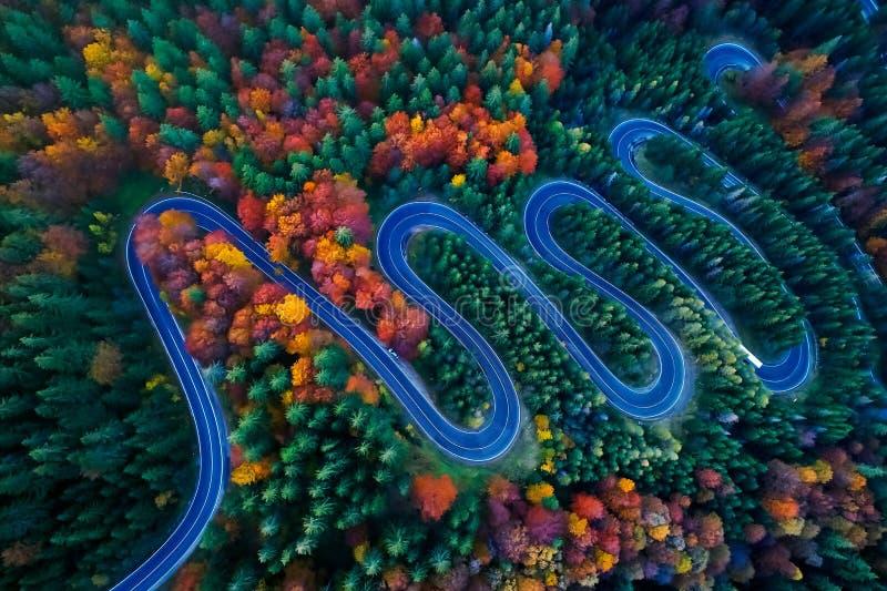 弯曲的路低谷五颜六色的秋天森林 库存图片