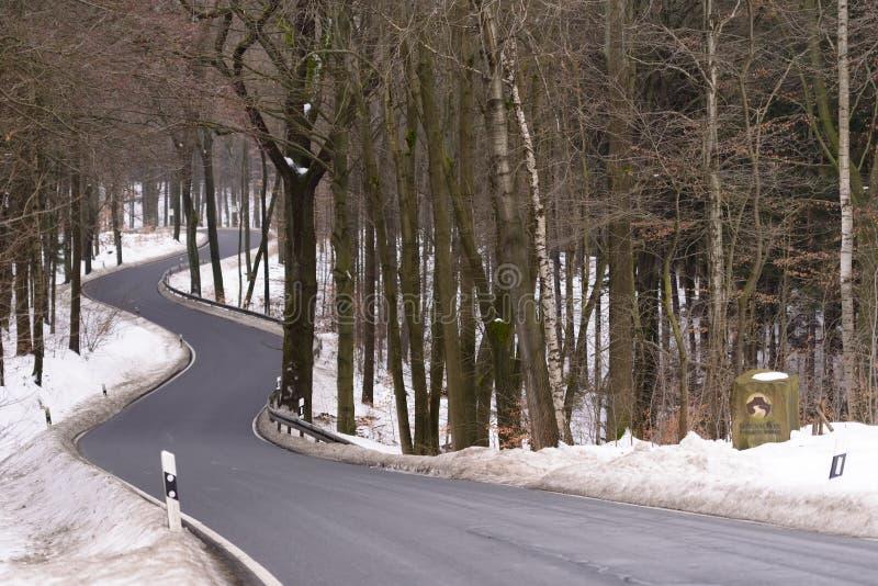 弯曲的路在国家公园 图库摄影