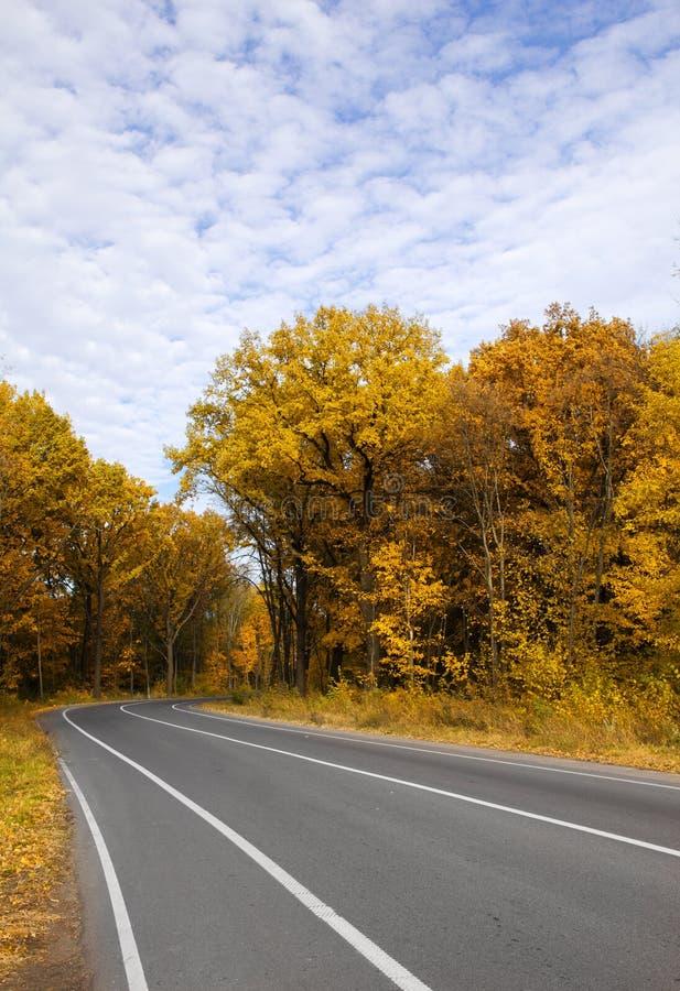 弯曲路的秋天 免版税库存图片