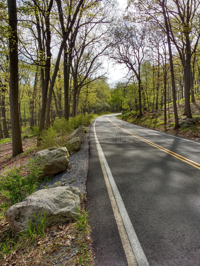 弯曲道路在哈立曼国家公园,纽约,美国 免版税库存照片