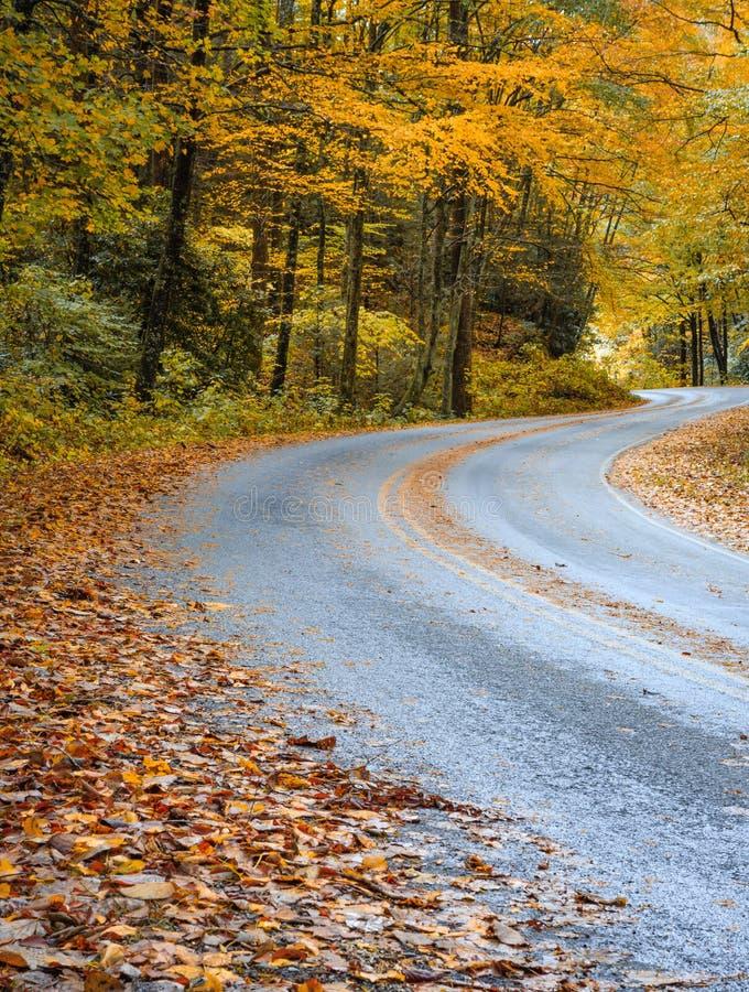 弯曲道路在秋天在北卡罗来纳 库存照片
