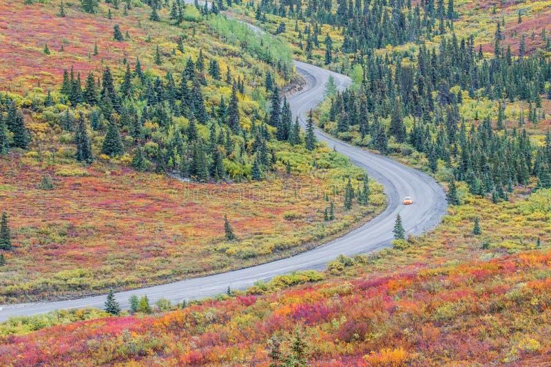 弯曲道路在Denali国家公园在阿拉斯加 免版税库存照片