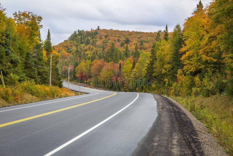 弯曲道路通过秋天颜色-安大略,加拿大森林  免版税库存照片