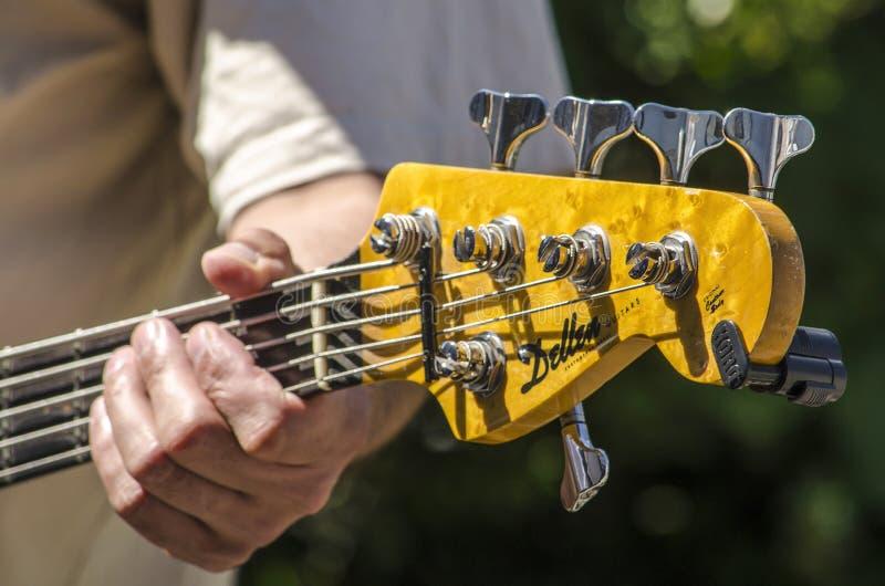 弹五弦低音 免版税库存照片