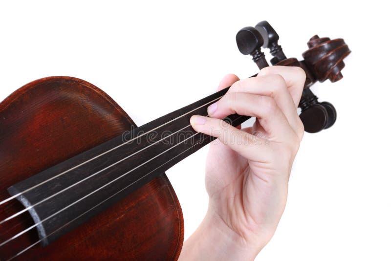 弹小提琴 免版税库存图片
