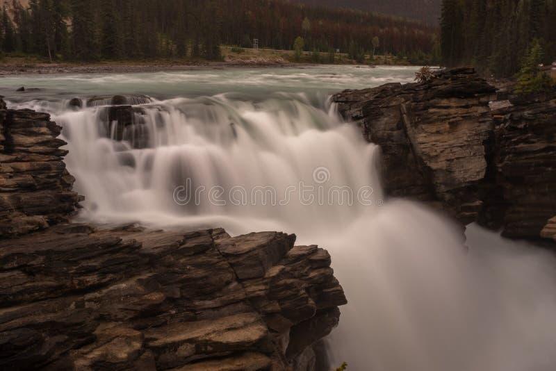 强大阿萨巴斯卡瀑布在班夫国家公园,加拿大,水挤压洪流通过在岩石和秋天的一个空白许多 库存照片