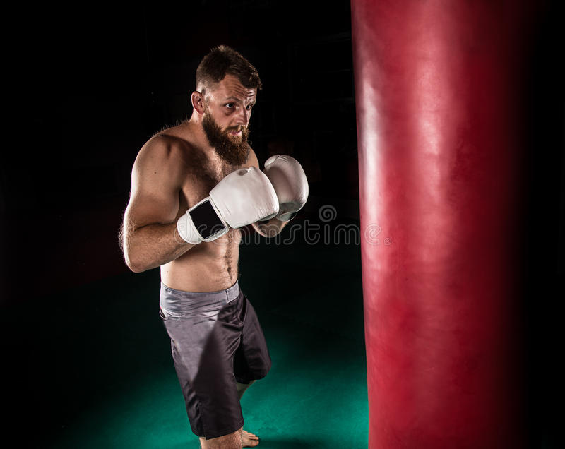 给强有力的反撞力的肌肉行家战斗机在与拳击袋子的一实践期间 免版税库存图片