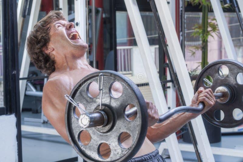 强烈的杠铃卷毛锻炼 免版税库存图片