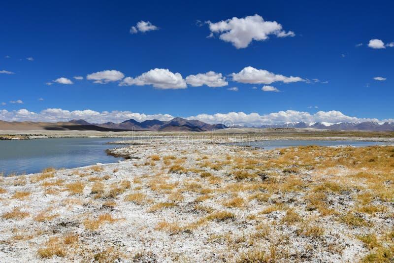 强烈盐湖Ruldan Nak在西藏,中国 免版税库存照片