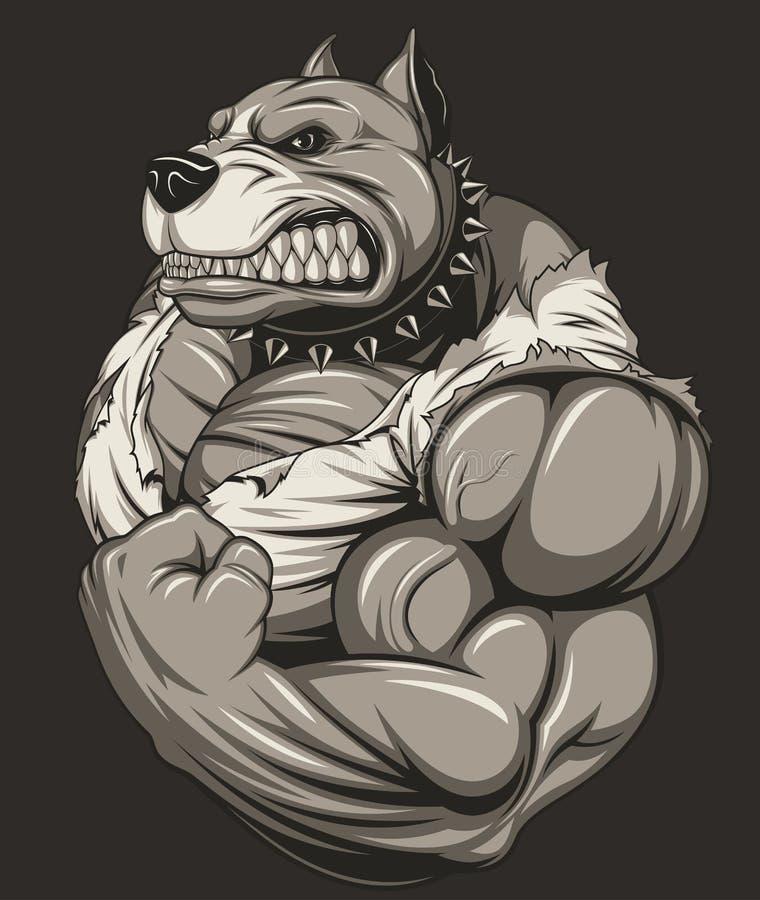 强的凶猛pitbull 皇族释放例证
