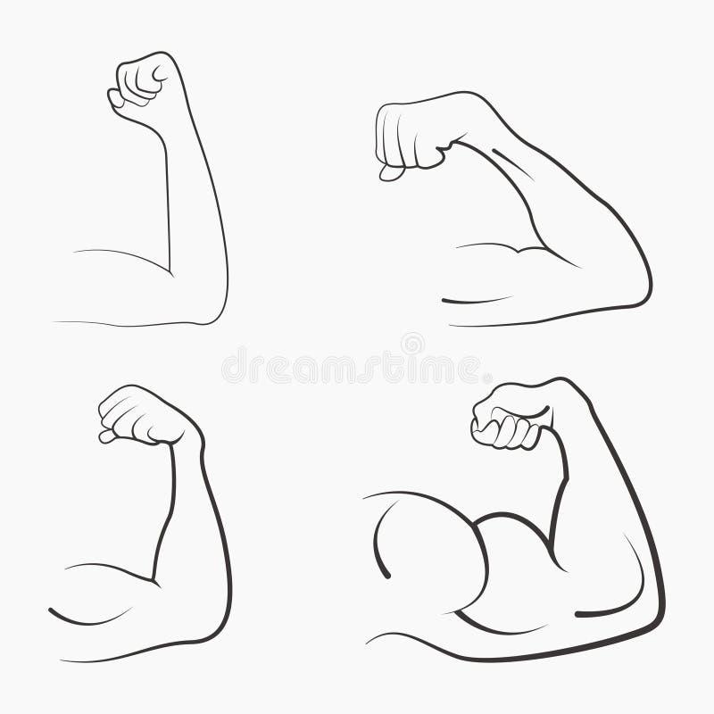 强的力量,肌肉 皇族释放例证