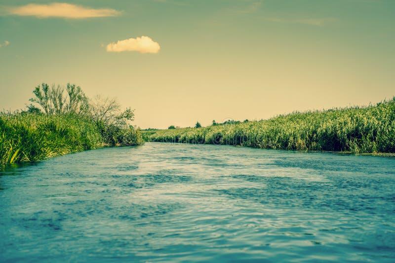 强的河小河 库存照片