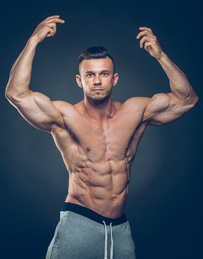 强的运动人健身模型躯干陈列 免版税库存图片