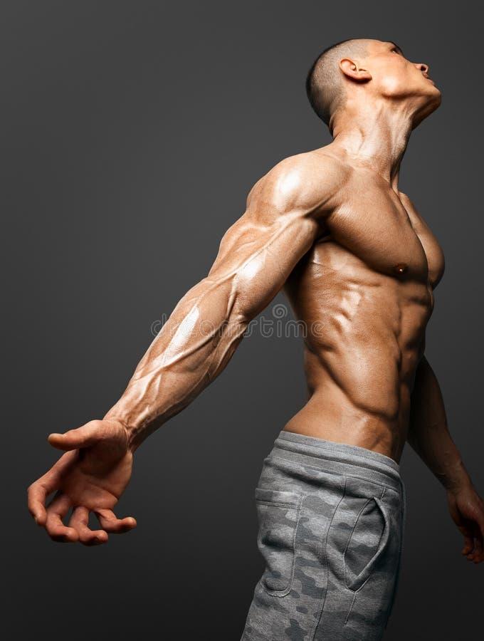 强的运动人健身模型 免版税图库摄影