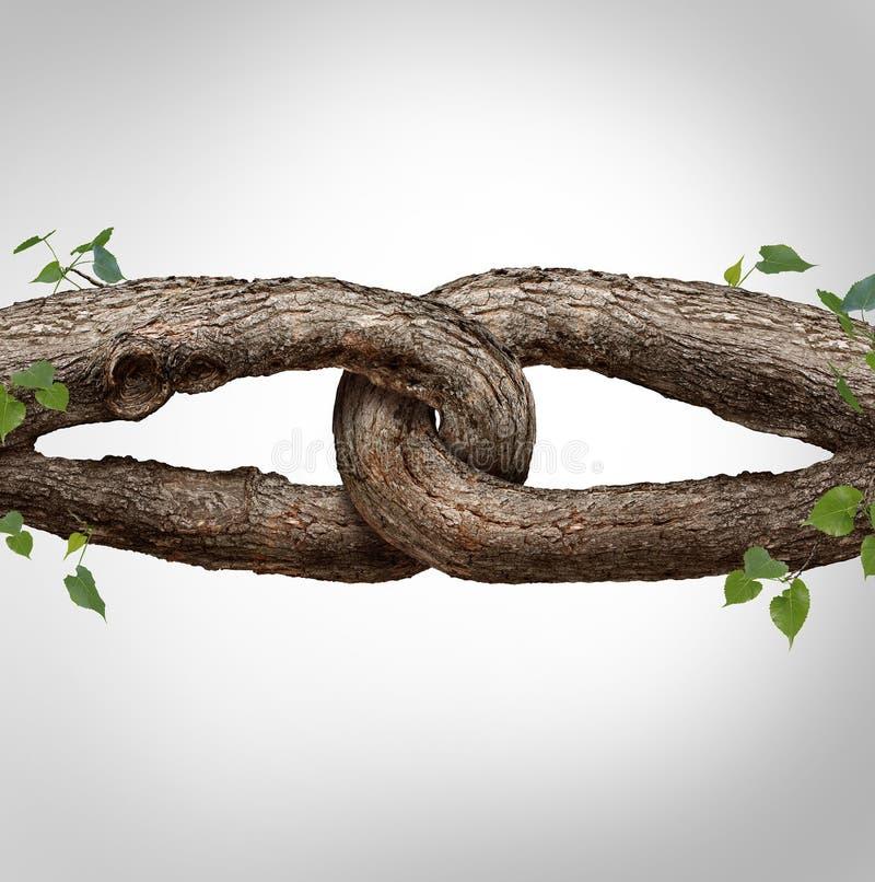 强的链概念 向量例证