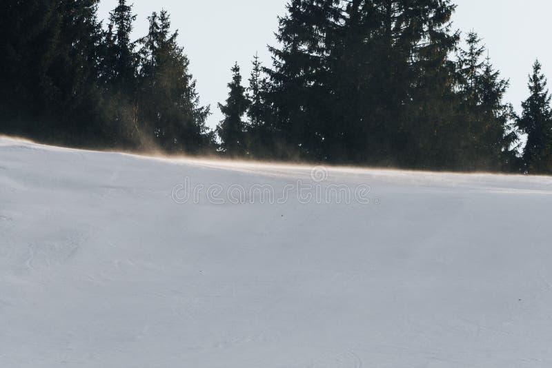 强风阵风在滑雪倾斜顶部 免版税库存图片