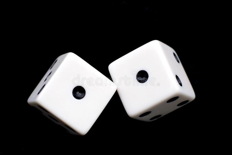 彀子二白色 免版税库存图片