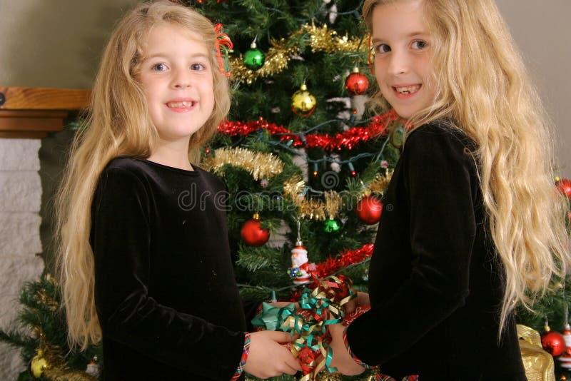 当前共享的姐妹孪生 免版税图库摄影