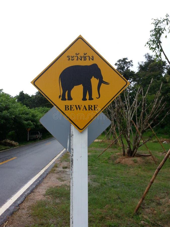 当心大象 免版税库存照片