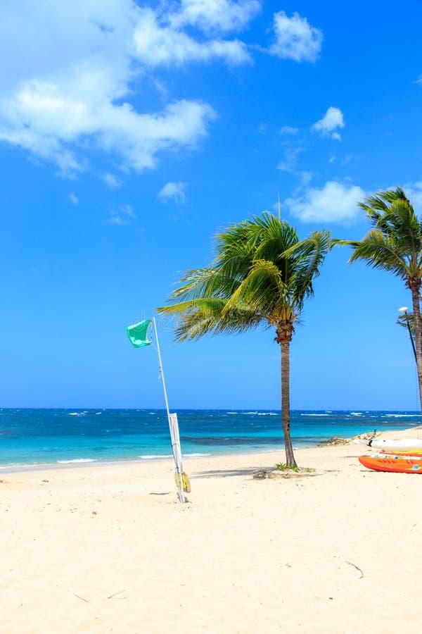 当沐浴时,在海滩的绿色旗子不表明危险 多米尼加共和国 免版税库存图片