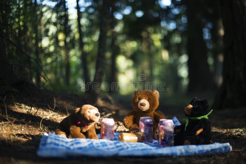 当玩具熊有他们的野餐 库存图片