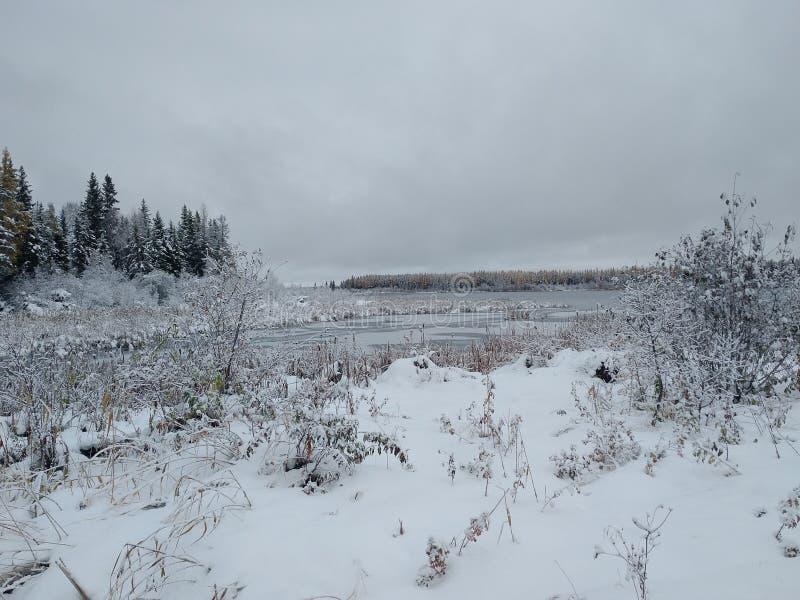 形成冰湖 库存照片