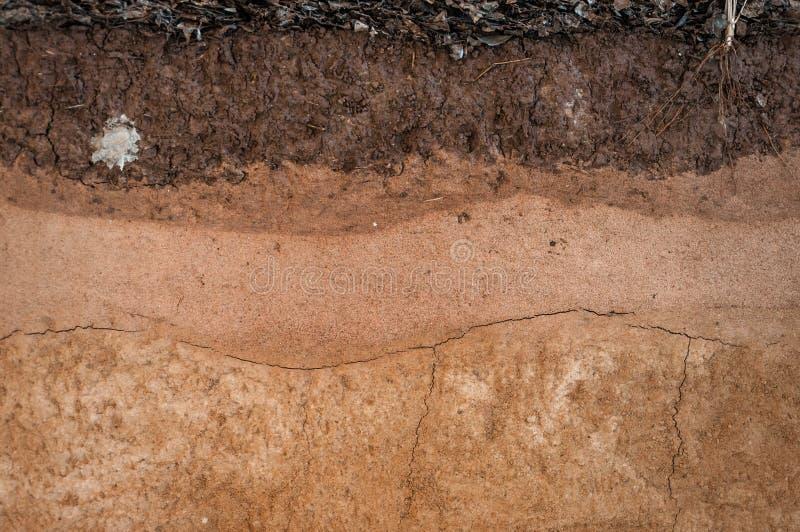 形成土壤层、它的颜色和纹理 免版税库存照片