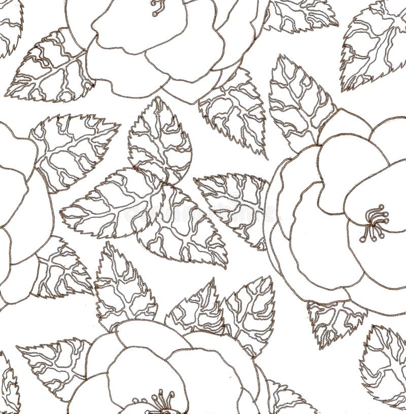 形成徒手画画对与山茶花的花卉图案图片